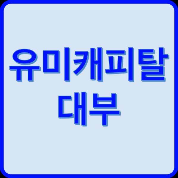 유미캐피탈대부