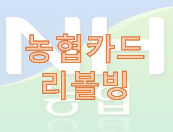 농협카드 리볼빙